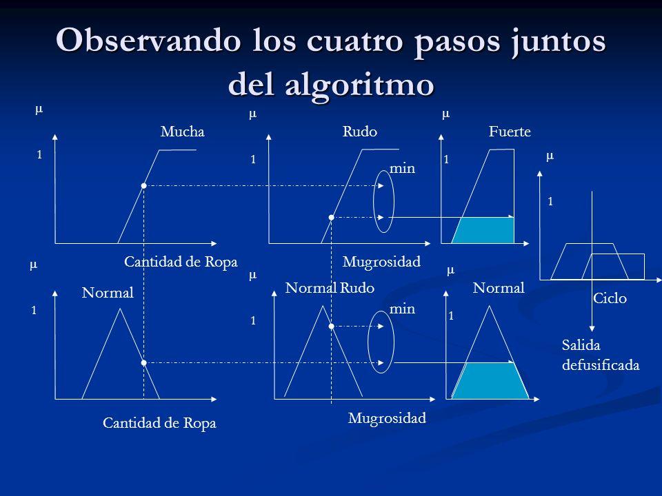 Observando los cuatro pasos juntos del algoritmo