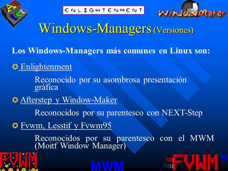Windows-Managers (Versiones)
