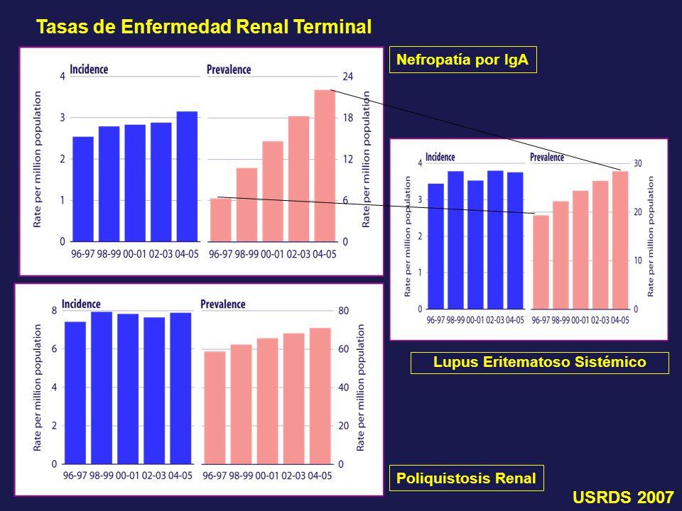 Tasas de Enfermedad Renal Terminal Lupus Eritematoso Sistémico