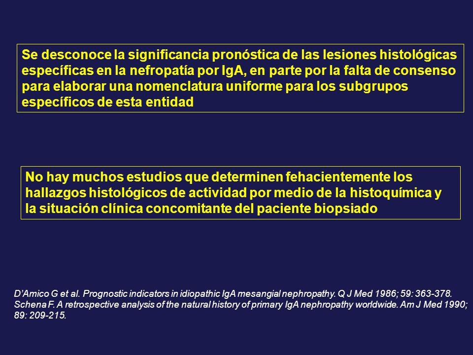 Se desconoce la significancia pronóstica de las lesiones histológicas específicas en la nefropatía por IgA, en parte por la falta de consenso para elaborar una nomenclatura uniforme para los subgrupos específicos de esta entidad