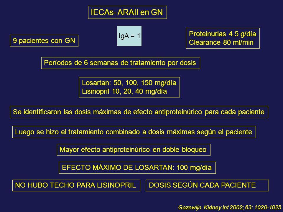 IECAs- ARAII en GN IgA = 1 Proteinurias 4.5 g/día Clearance 80 ml/min