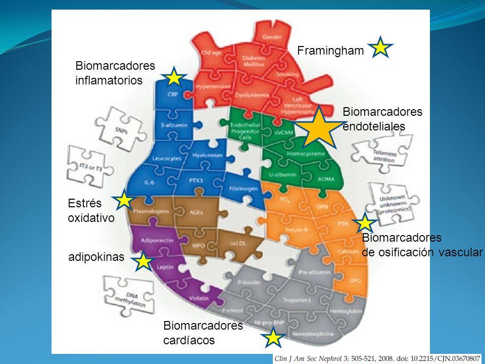 Framingham Biomarcadores. inflamatorios. Biomarcadores. endoteliales. Estrés. oxidativo. Biomarcadores.