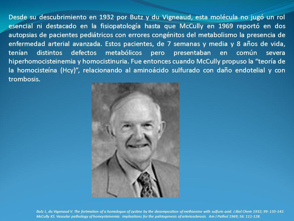 Desde su descubrimiento en 1932 por Butz y du Vigneaud, esta molécula no jugó un rol esencial ni destacado en la fisiopatología hasta que McCully en 1969 reportó en dos autopsias de pacientes pediátricos con errores congénitos del metabolismo la presencia de enfermedad arterial avanzada. Estos pacientes, de 7 semanas y media y 8 años de vida, tenían distintos defectos metabólicos pero presentaban en común severa hiperhomocisteinemia y homocistinuria. Fue entonces cuando McCully propuso la teoría de la homocisteína (Hcy) , relacionando al aminoácido sulfurado con daño endotelial y con trombosis.