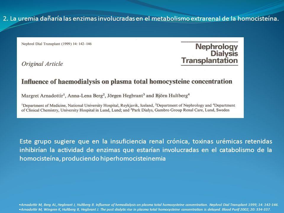 2. La uremia dañaría las enzimas involucradas en el metabolismo extrarenal de la homocisteína.