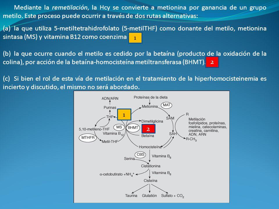 Mediante la remetilación, la Hcy se convierte a metionina por ganancia de un grupo metilo. Este proceso puede ocurrir a través de dos rutas alternativas: