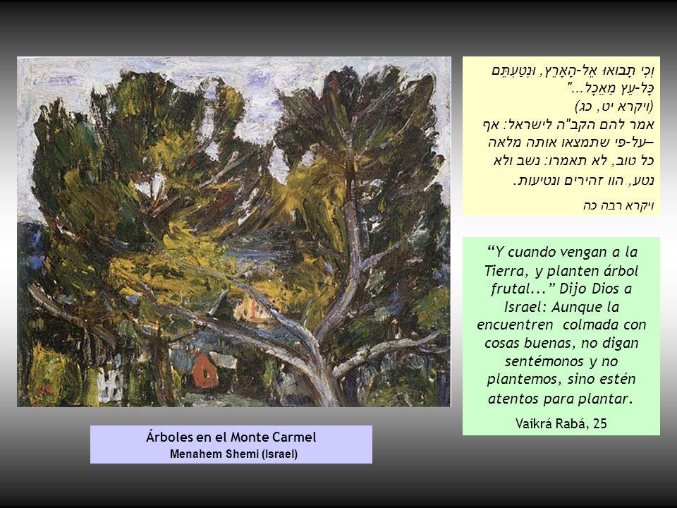 Árboles en el Monte Carmel Menahem Shemi (Israel)