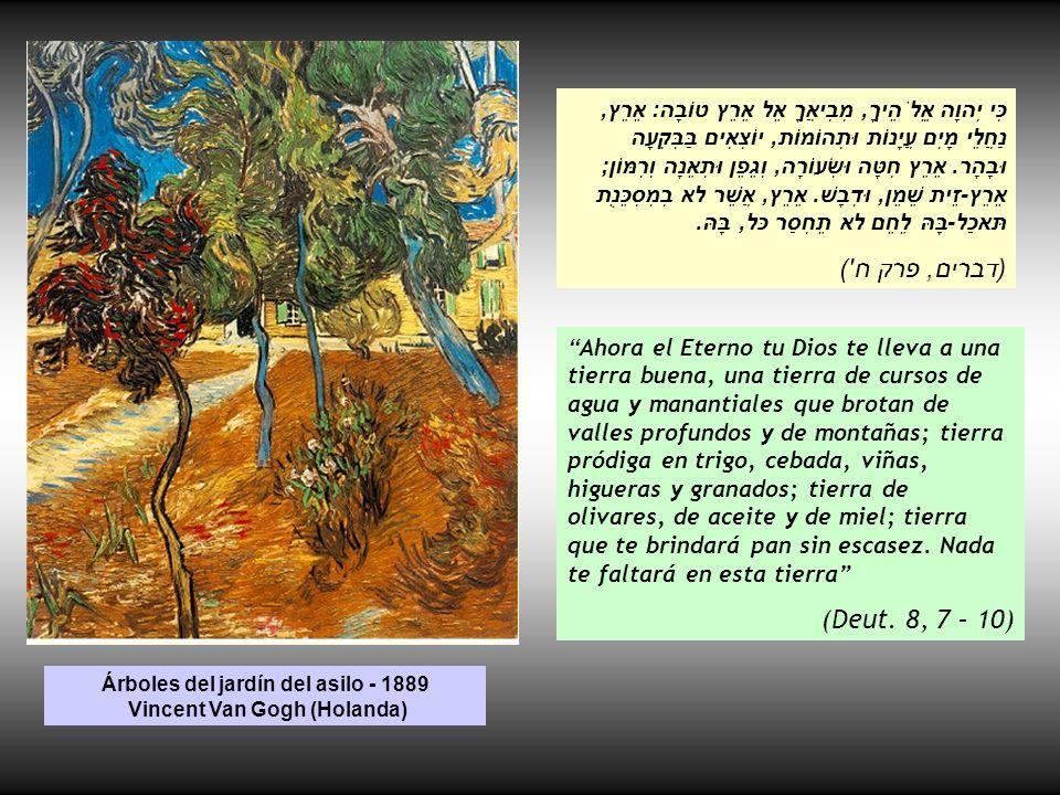 Árboles del jardín del asilo - 1889 Vincent Van Gogh (Holanda)