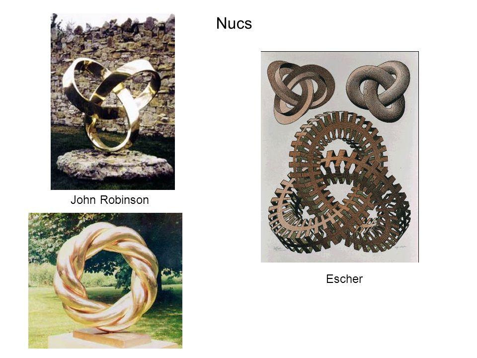 Nucs John Robinson Escher