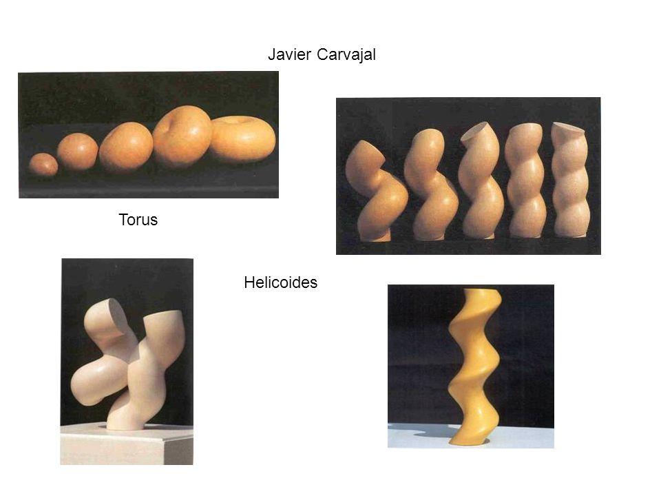 Javier Carvajal Torus Helicoides