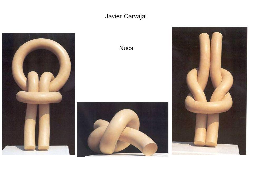 Javier Carvajal Nucs