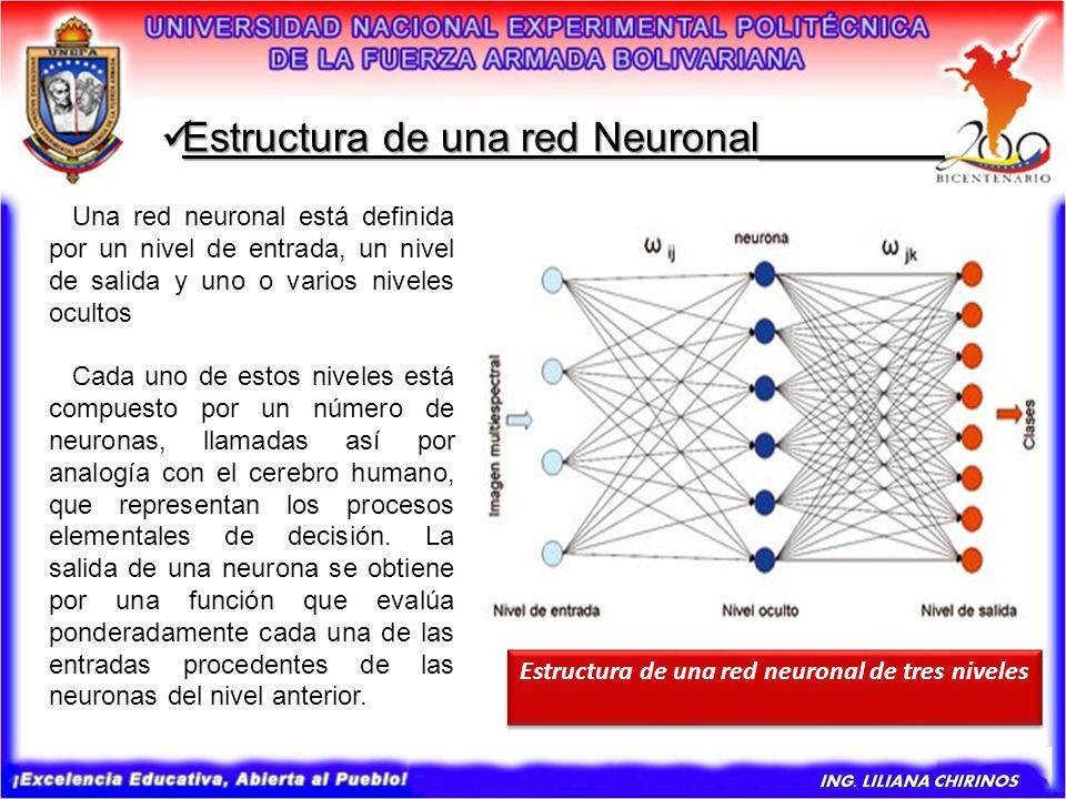 Estructura de una red neuronal de tres niveles
