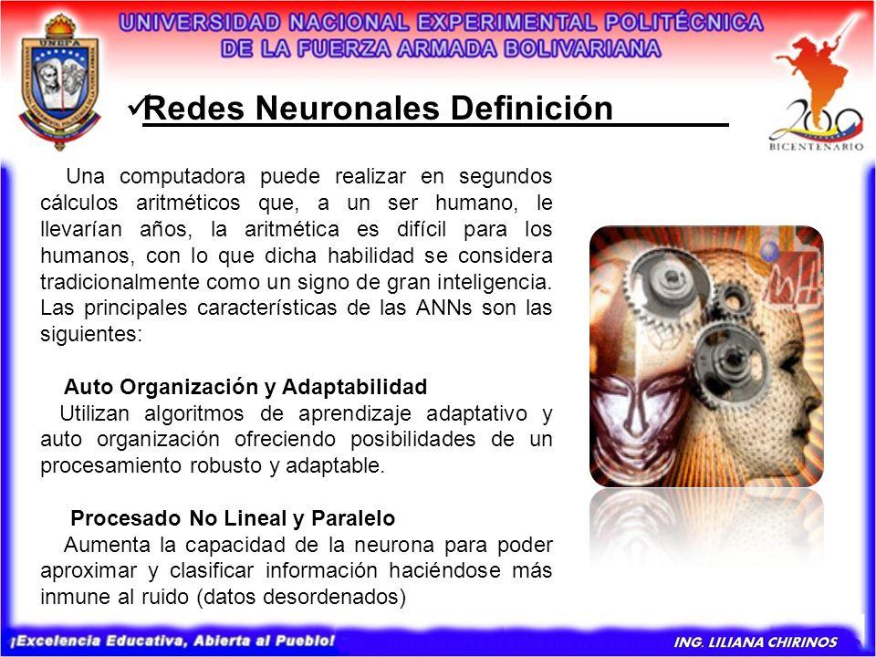 Redes Neuronales Definición______