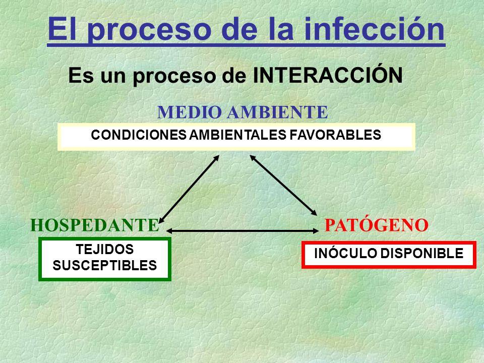 El proceso de la infección CONDICIONES AMBIENTALES FAVORABLES