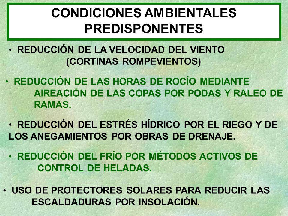 CONDICIONES AMBIENTALES PREDISPONENTES