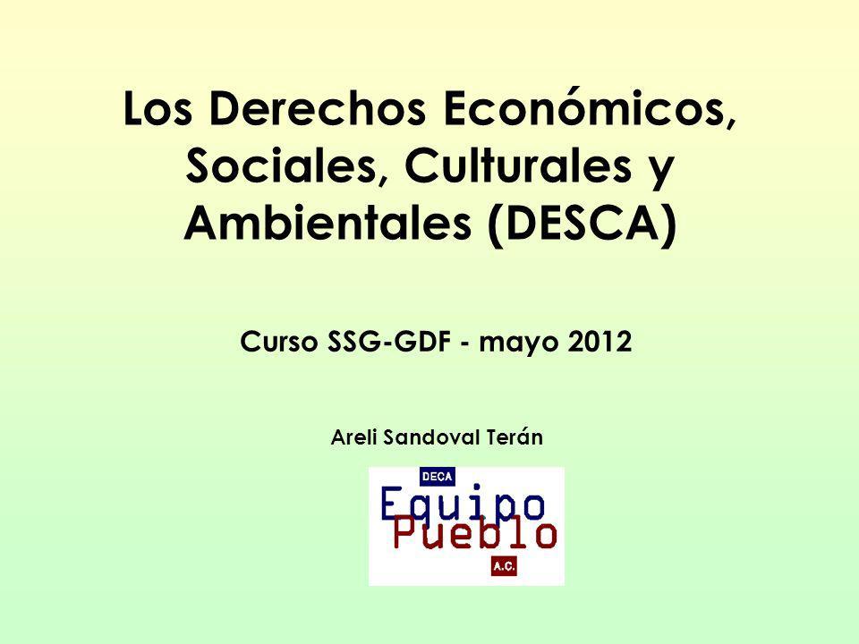 Los Derechos Económicos, Sociales, Culturales y Ambientales (DESCA)