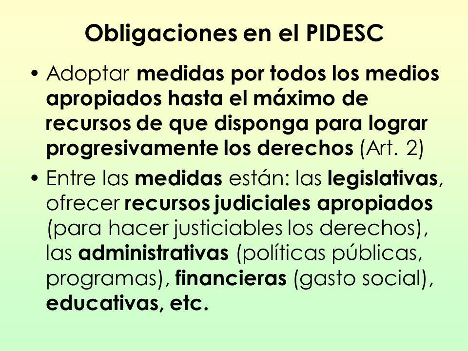 Obligaciones en el PIDESC