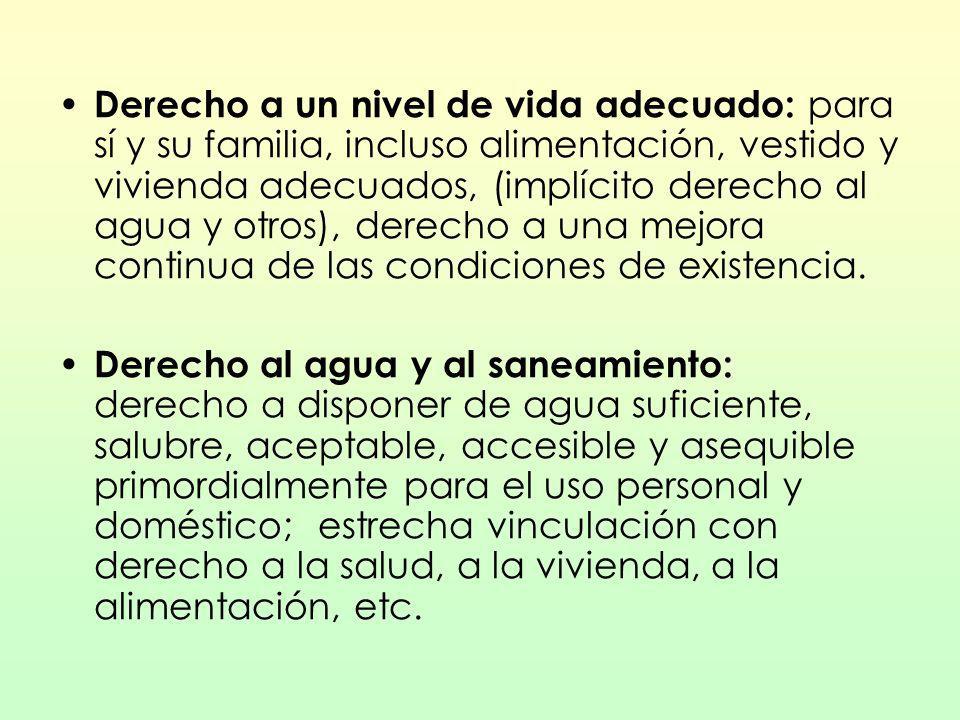 Derecho a un nivel de vida adecuado: para sí y su familia, incluso alimentación, vestido y vivienda adecuados, (implícito derecho al agua y otros), derecho a una mejora continua de las condiciones de existencia.