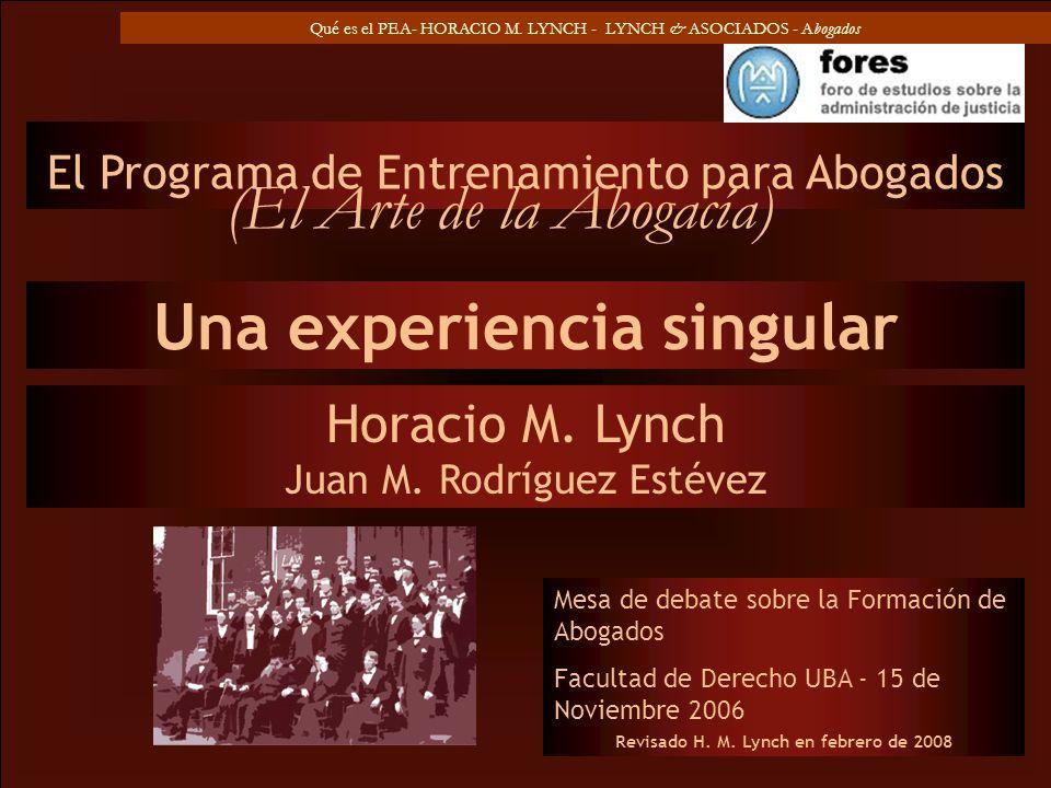 Una experiencia singular Revisado H. M. Lynch en febrero de 2008