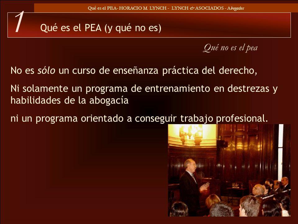 1 Qué es el PEA (y qué no es) Qué no es el pea