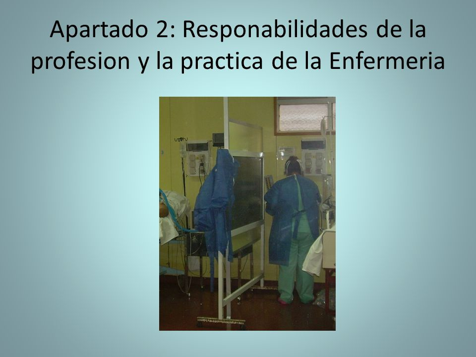 Apartado 2: Responabilidades de la profesion y la practica de la Enfermeria
