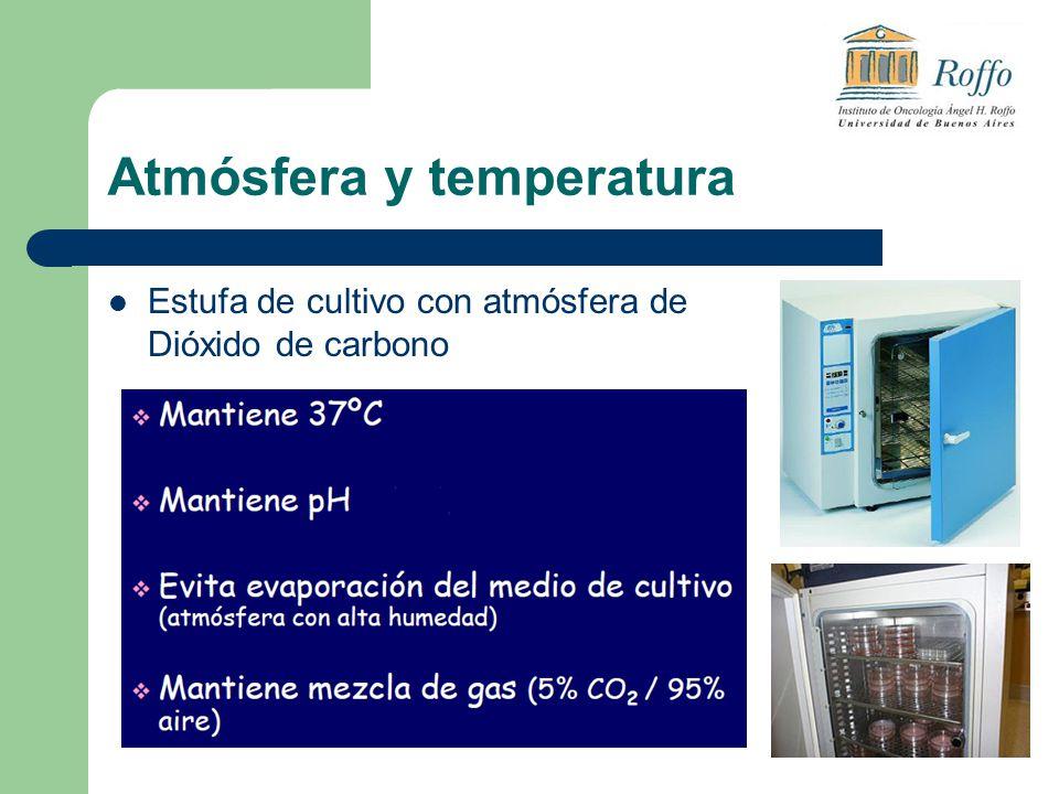 Atmósfera y temperatura