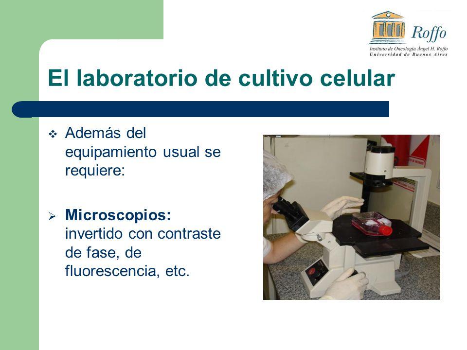 El laboratorio de cultivo celular