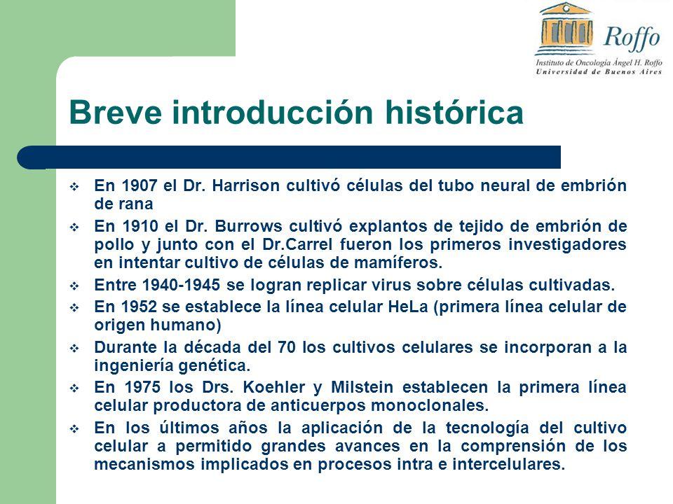 Breve introducción histórica