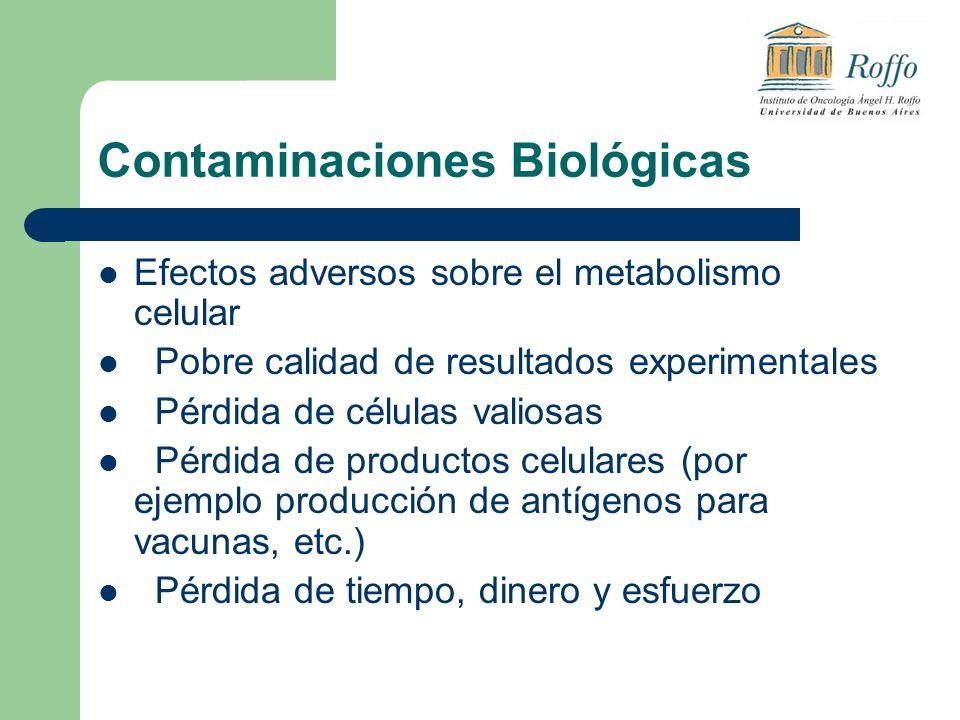 Contaminaciones Biológicas