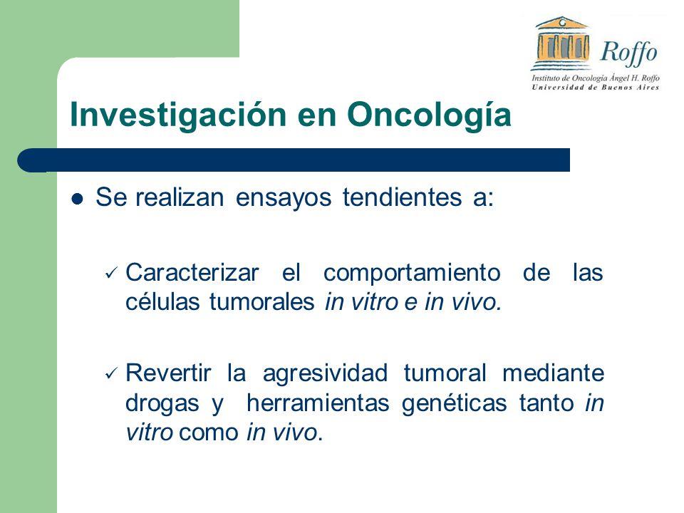 Investigación en Oncología