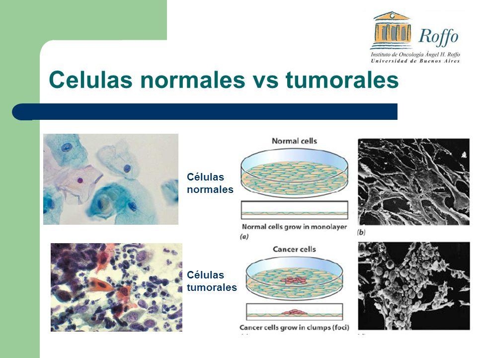 Celulas normales vs tumorales