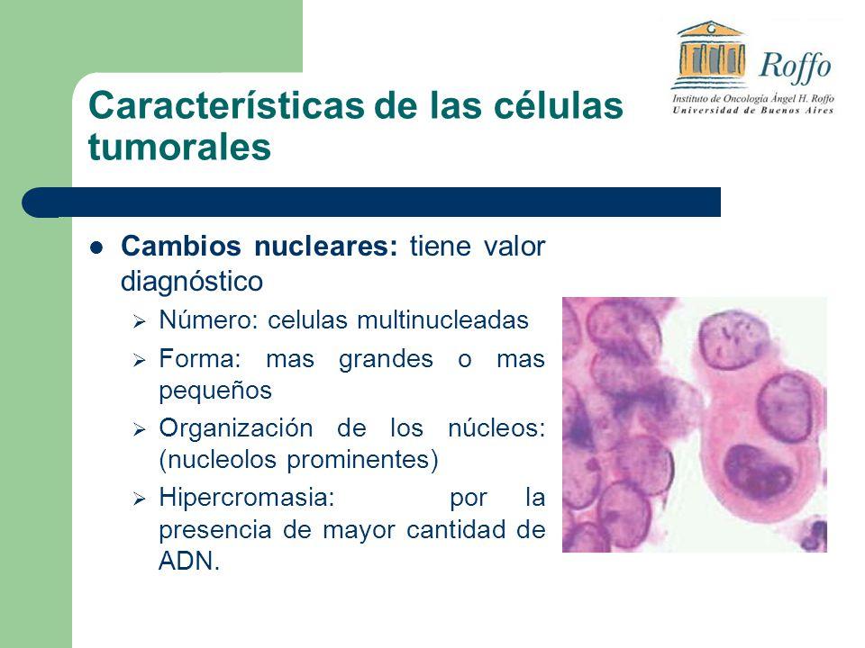 Características de las células tumorales