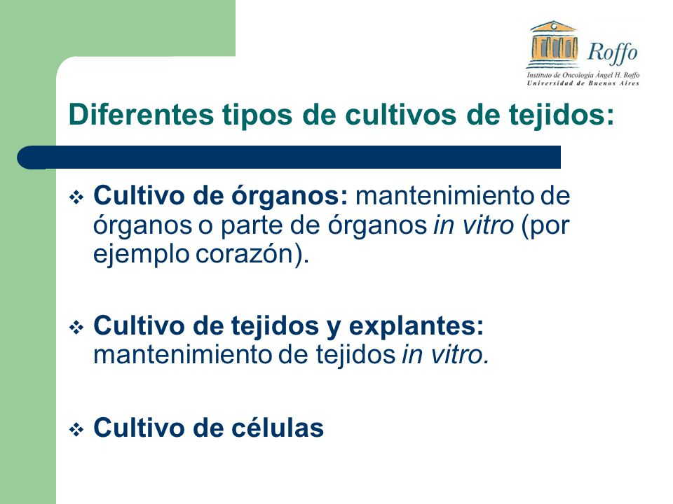 Diferentes tipos de cultivos de tejidos: