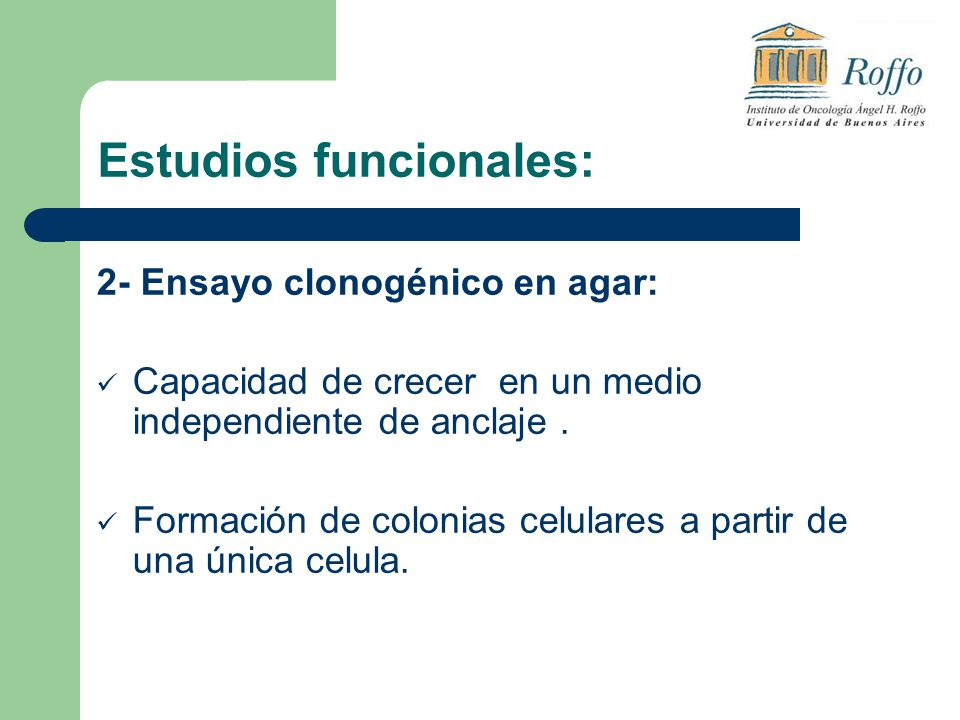 Estudios funcionales: