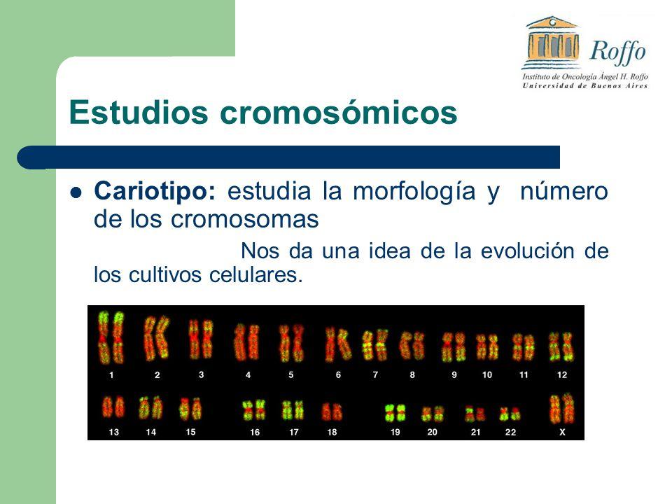 Estudios cromosómicos