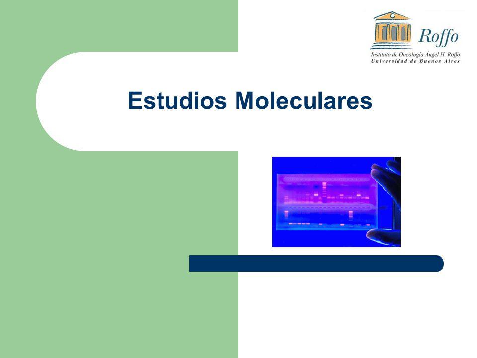 Estudios Moleculares