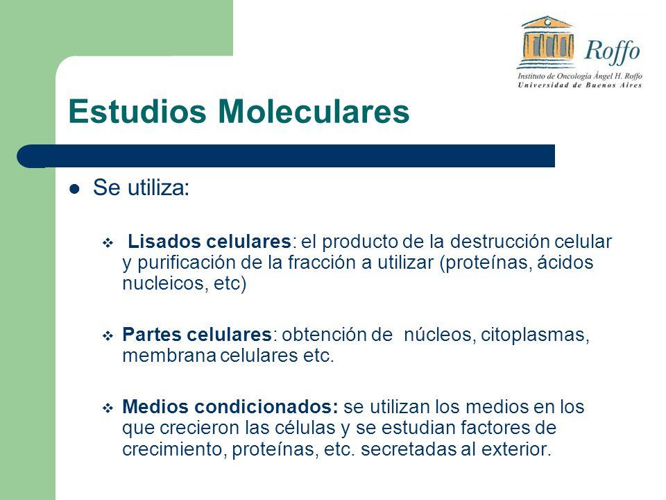 Estudios Moleculares Se utiliza: