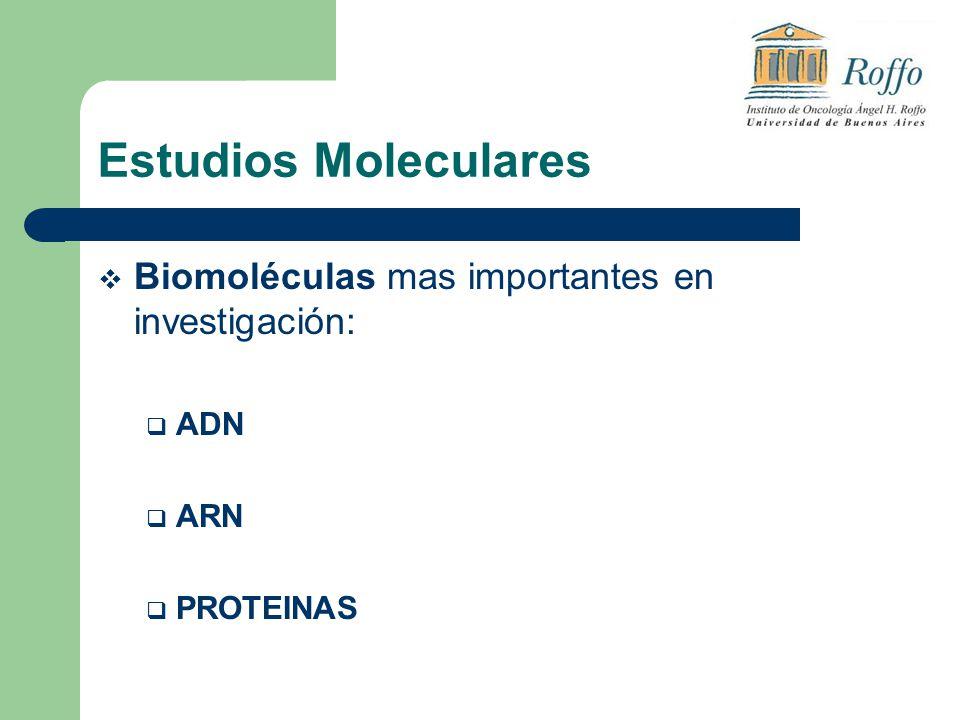Estudios Moleculares Biomoléculas mas importantes en investigación:
