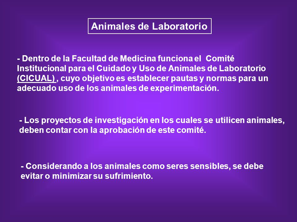 Animales de Laboratorio