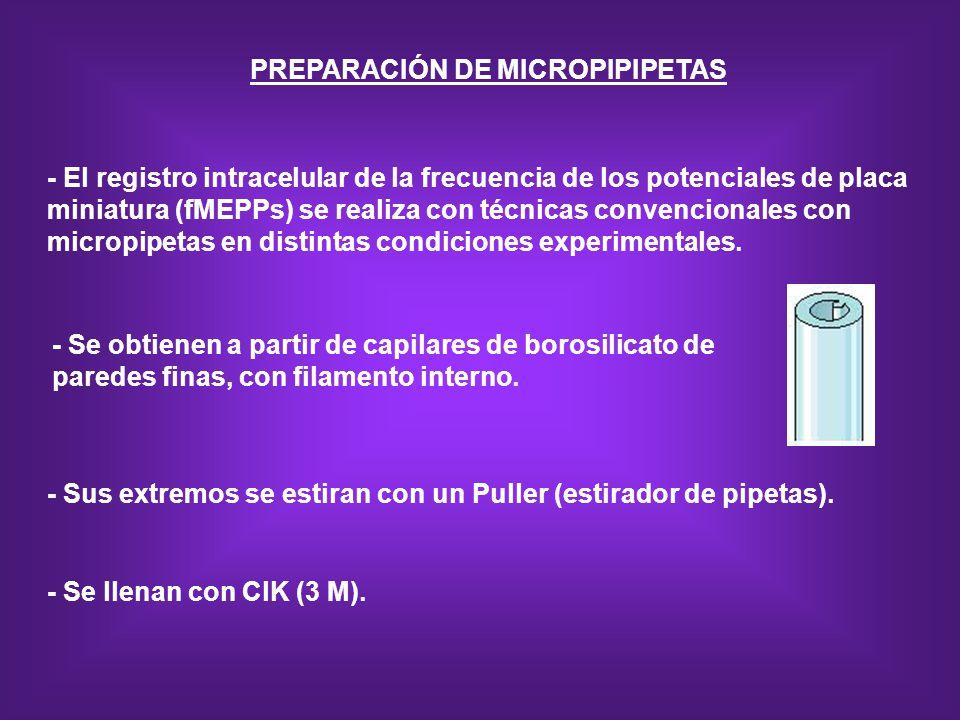 PREPARACIÓN DE MICROPIPIPETAS