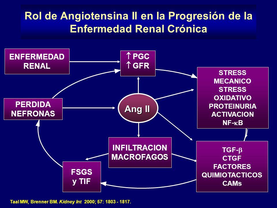 Rol de Angiotensina II en la Progresión de la Enfermedad Renal Crónica
