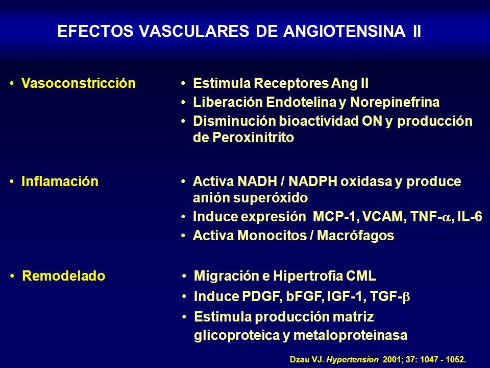 EFECTOS VASCULARES DE ANGIOTENSINA II