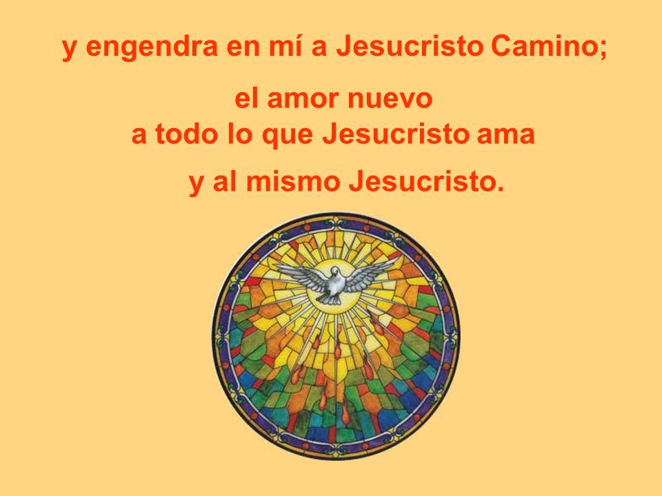 el amor nuevo a todo lo que Jesucristo ama