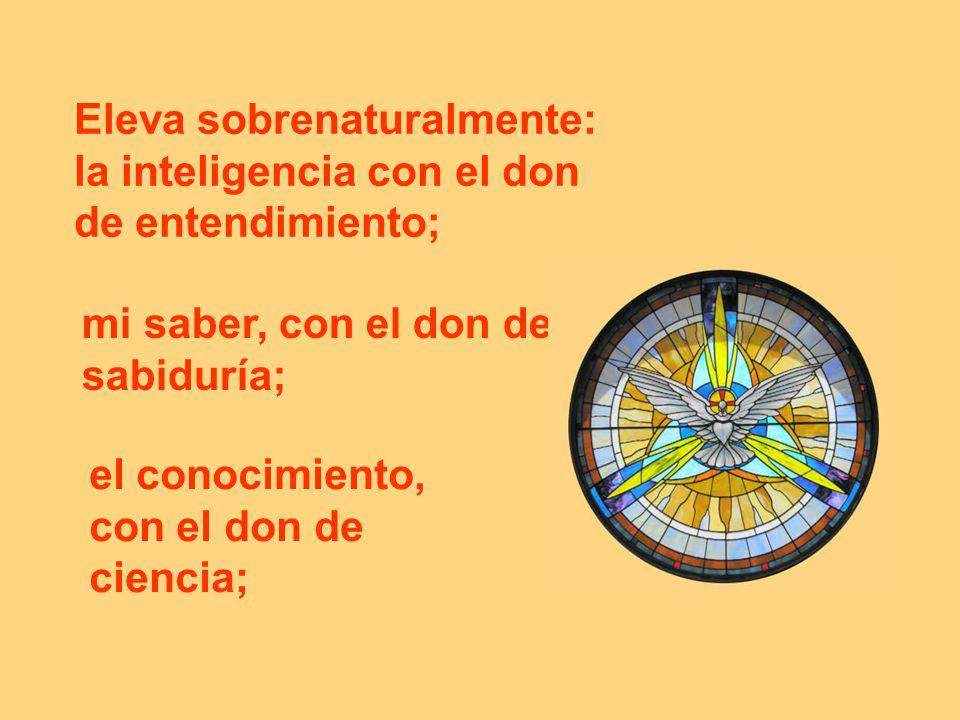 Eleva sobrenaturalmente: la inteligencia con el don de entendimiento;
