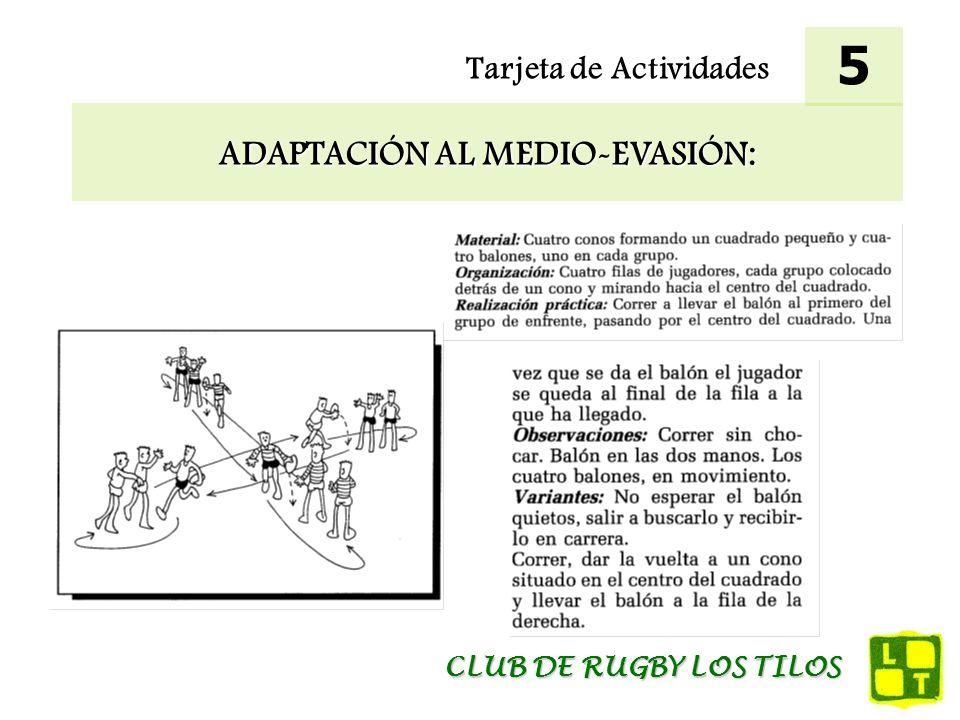 ADAPTACIÓN AL MEDIO-EVASIÓN: