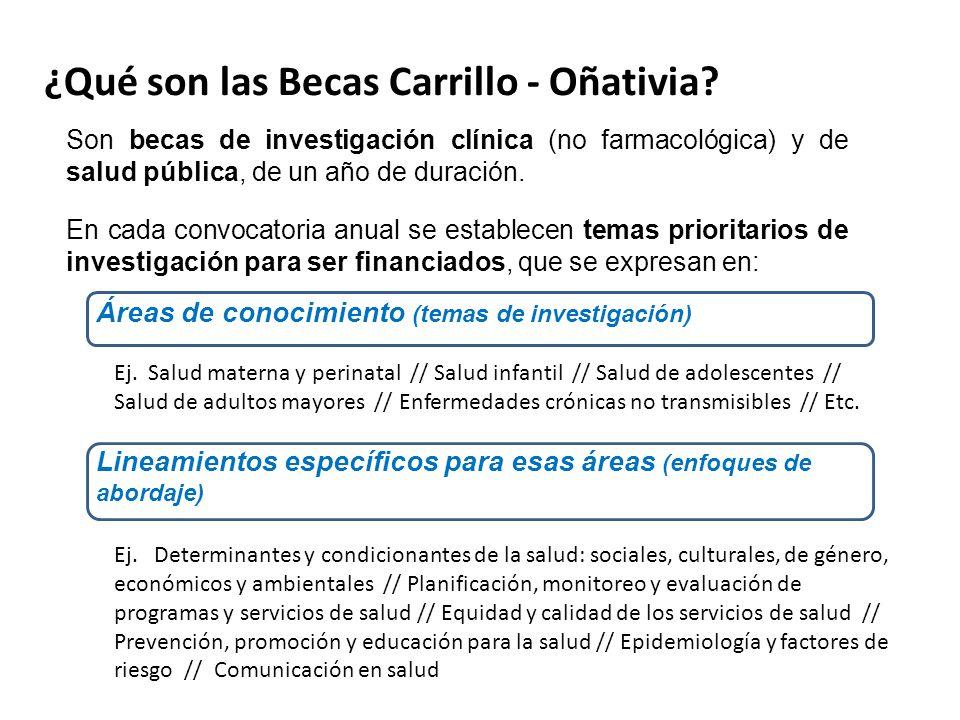 ¿Qué son las Becas Carrillo - Oñativia