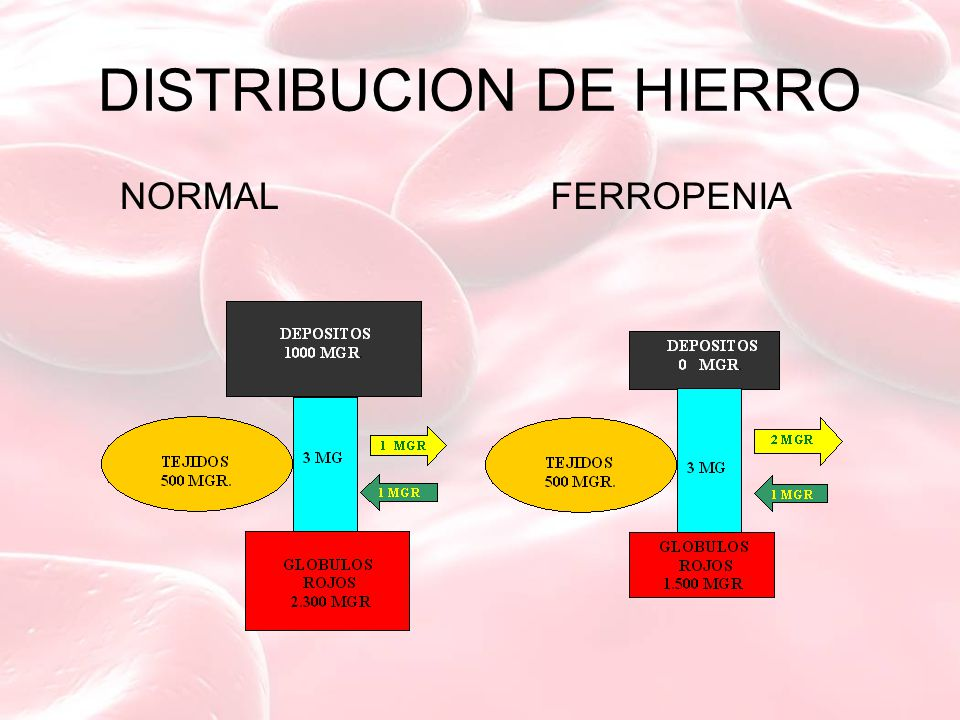 DISTRIBUCION DE HIERRO