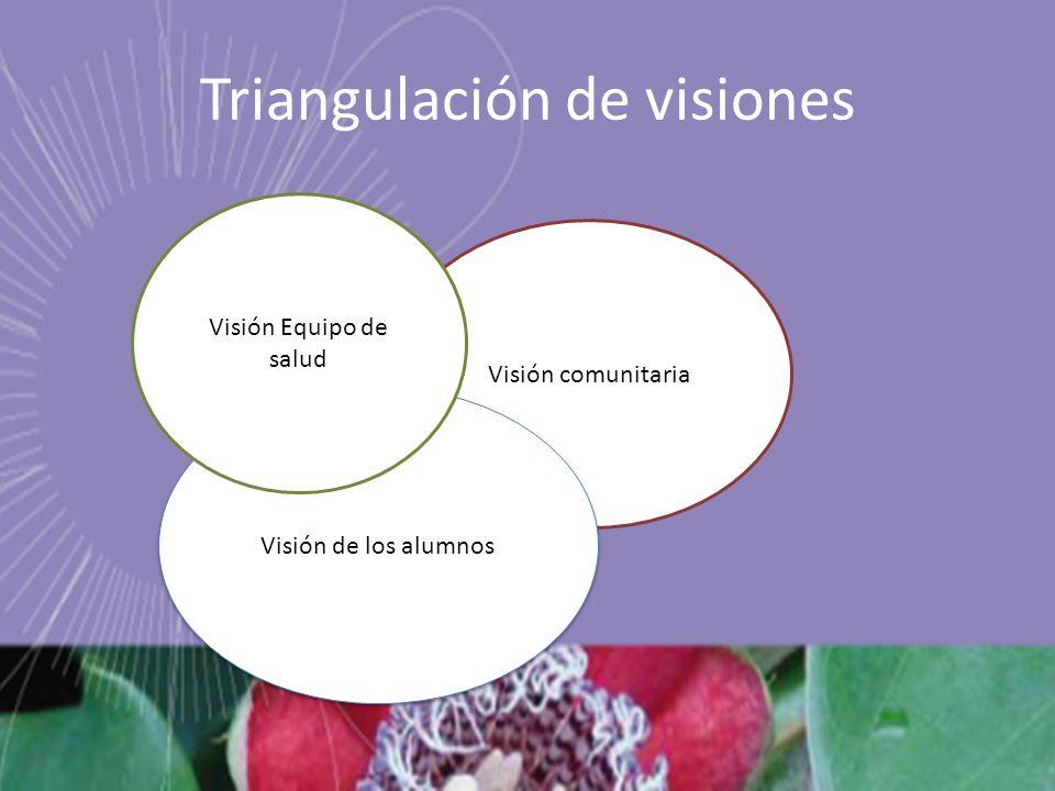 Triangulación de visiones
