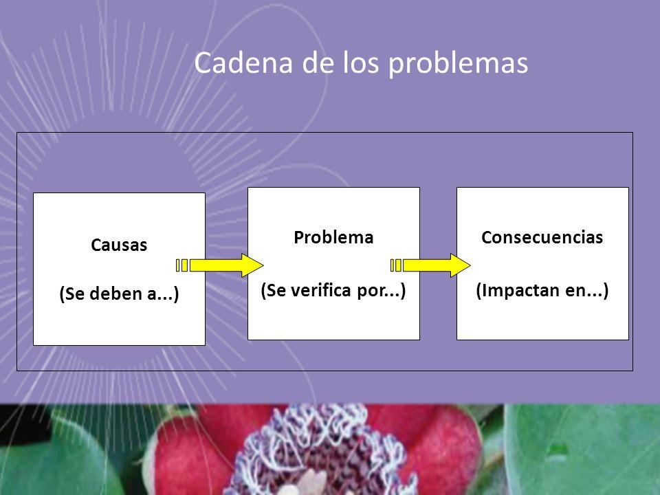 Cadena de los problemas