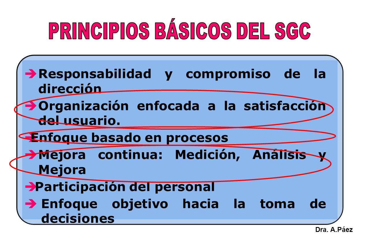 PRINCIPIOS BÁSICOS DEL SGC