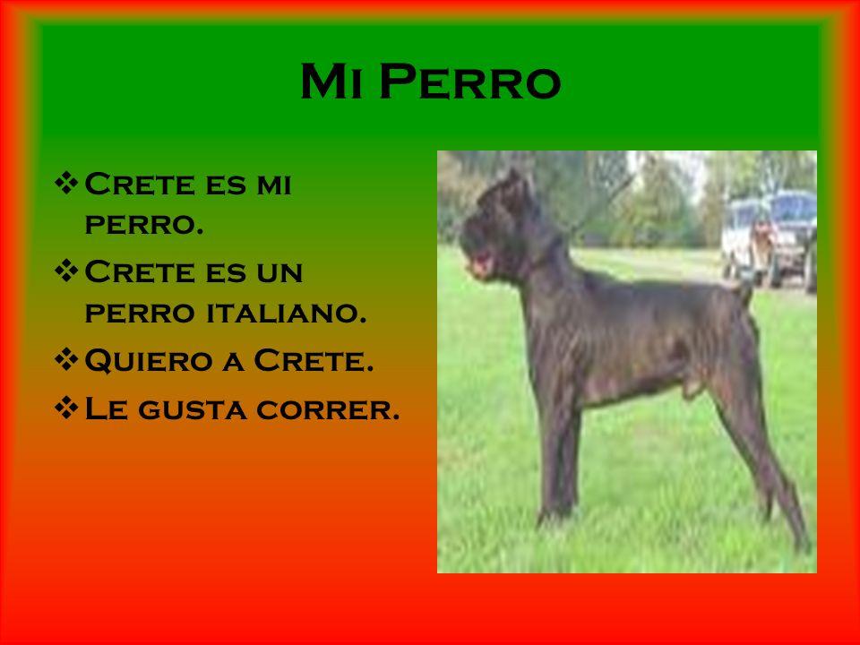 Mi Perro Crete es mi perro. Crete es un perro italiano.